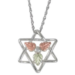 Black Hills Gold Sterling Silver Star Of  David Pendant w Necklace