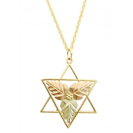 10K Black Hills Gold Star of David Pendant By Coleman
