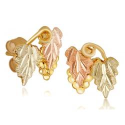 Landstrom's® Small Black Hills Gold 10K Post Earrings