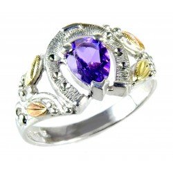 Black Hills Sterling and 12K Horseshoe Ring with Amethyst