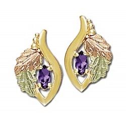 Landstrom's® Small 10K Gold Earrings with Amethyst