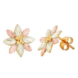 Landstrom's® Small 10K Black Hills Gold Flower Post Earrings